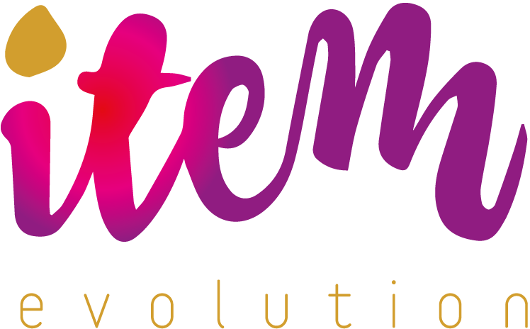 Item Evolution - Logo